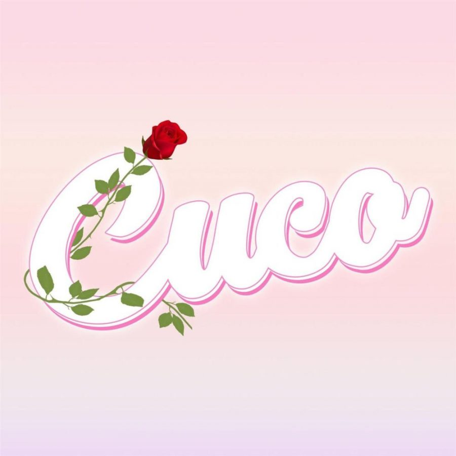 Image result for cuco album cover
