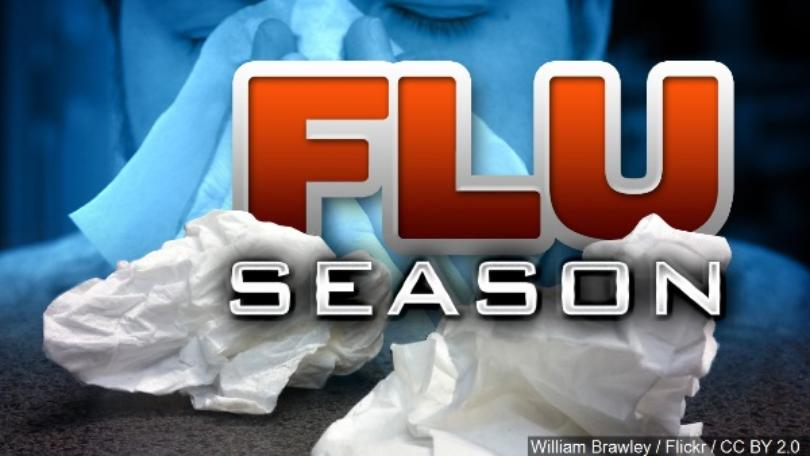 The Facts on This Year's Flu Season