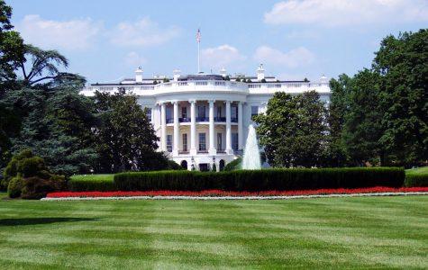 2019-2020 Presidential Campaigning Season