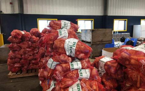 Pallets of bagged produce ready to be wrapped and shipped out. (Picture taken by Lajla Raske)