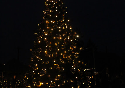 The beautiful tree was lit by the mayor Brian Rake for all the people of Carlton.