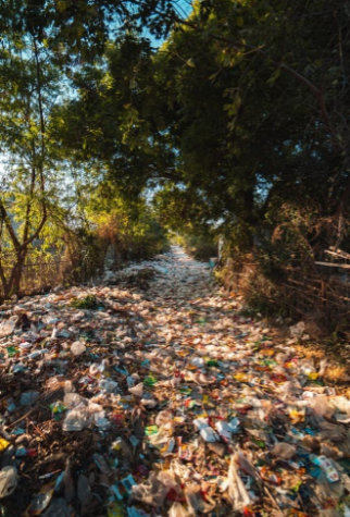 Plastic lays on the ground in an outside area surrounded by trees. This is what common areas could look like where plastic is not disposed of.